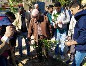 زراعة ألف شجرة مثمرة بمدارس حى البساتين فى القاهرة