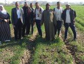 زراعة الشرقية : تنظيم يوم حقلى ومحاضرة عن ترشيد مياه الرى بمركز منيا القمح