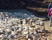 زراعة الشرقية تشن حملة لإزالة تعديات فى بنايوس و كفر الحمام