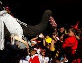 """أفيال ترتدى زى """"سانتا كلوز"""" فى تايلاند احتفالا بالكريسماس"""