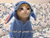"""محمد هنيدى يدخل ترند """"القطة"""" بمشهد من فيلم """"صعيدى فى الجامعة الأمريكية"""""""
