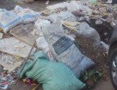 شكوى من تراكم مخلفات البناء فى شارع حافظ رمضان بمينة نصر