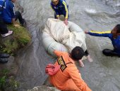ارتفاع حصيلة ضحايا سقوط حافلة من فوق تلة فى إندونيسيا لـ26 شخصا