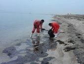 البيئة: 50 بلاغا عن حوادث تلوث بحرى بالزيت خلال 2019