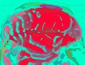 مهندسون ينجحون فى ترجمة إشارات الدماغ إلى كلام مفهوم