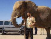 كريم بنزيما يستعرض مهاراته مع الفيل فى دبي.. فيديو