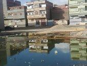 قارئ يشكو انتشار مياه الصرف الصحى بقرية ميت عاصم فى الدقهلية