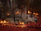 هواء غير آمن.. هيئات أسترالية تعلق عملها وقلق على الأطفال بسبب دخان الحرائق