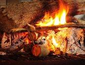التعرض لغاز الأوزون ودخان الأخشاب يزيد من خطر أمراض الرئة