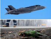صور.. العالم هذا الصباح..الرئيس الروسى يحضر احتفالات عيد الميلاد وسط محجبات فى كاتدرائية.. تمرين القوة القتالية للقوات الجوية الأمريكية بطائرات F-35A.. ونفوق الطيور بسبب تصاعد حرائق الغابات فى استراليا
