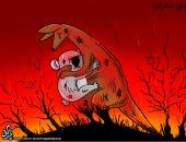 كاريكاتير صحيفة أردنية.. الحيوانات تدفع ثمن حرائق الغابات فى أستراليا