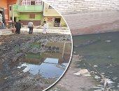 القومية لمياه الشرب والصرف الصحى: قرية السوالم غير مدرجة بالمخطط العام لمشروعات المنيا