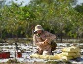 نساء يتحدين الموت.. سيدات فيتنام يطهرن الأراضى من ألغام الحرب