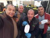 """جمارك شرق بورسعيد تحبط محاولة تهريب 3060 """"فرش حشيش"""" داخل صفقة تفاح.. صور"""