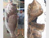 """باحثون أمريكيون يعثرون على أكبر سمكة عمراً فى العالم .. """"صورة"""""""