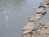 شكوى من تجمع مياه الصرف الصحى والأمطار بمنطقة أبو تلات بغرب الإسكندرية