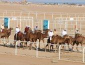 اليوم.. انطلاق فعاليات مهرجان شرم الشيخ التراثي الدولي بالتعاون مع الإمارات