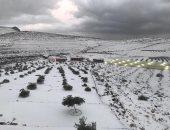 """إطلالة شتوية نادرة.. جبل جيس يكتسى بالثلوج وترحيب من الإماراتيين """"صور"""""""