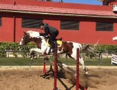 فارس درجة أولى.. أحمد السقا يشارك صورة للحظة قفزه بالحصان من الحواجز