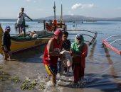 الفلبينيون يحاولون إنقاذ الحيوانات والماشية من الحمم البركانية