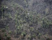 """إجلاء أكثر نصف مليون شخص فى الفلبين بسبب ثوران بركان """"تال"""""""
