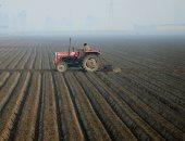 شاهد.. كورونا يضرب الزراعة ويدمر محاصيل بالمليارات حول العالم