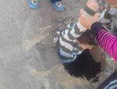 شاب ينقذ طفلا سقط في بلاعة صرف صحى بقرية في الشرقية