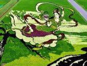 """شاهد.. لوحات """"فن التامبو"""" بمحصول الأرز الملون فى اليابان"""