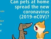 هل الحيوانات الأليفة بالمنزل تنشر العدوى بفيروس كورونا؟.. الصحة العالمية تجيب