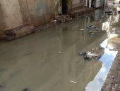 ارتفاع منسوب مياه الصرف الصحى.. شكوى سكان شارع أبو عوض فى بلقاس دقهلية