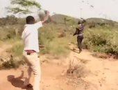 """غزو الجراد.. أسراب بالملايين تهاجم زراعات شرق أفريقيا """"فيديو"""""""