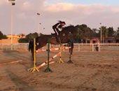 """قفزة جديدة للسقا بحصانه.. وجمهوره """"أخطر خطير يا أبو ياسين"""" .. فيديو"""