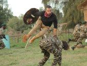 """محمد إمام بعد عرض لص بغداد فى الأردن: الفيلم """"مكسر الدنيا"""" بالوطن العربى"""