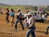 صور.. الفلسطينيون يزرعون أرض غزة بمساعدة من الصليب الأحمر