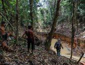صور.. وكلاء البيئة البرازيلية يعملون فى منجم للذهب بغابات الأمازون