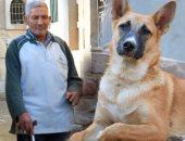حدوتة ولا فى الأفلام عم عاشور كفيف يعيش بعيون الكلب شيكو