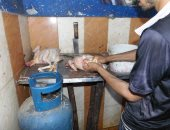 """""""بيطرى أسوان"""" يحذر من ذبح الطيور فى الشوارع ويؤكد ينشر الأمراض"""