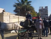 """رئيس مدينة الأقصر: نواصل حملات """"إمسك حنطور"""" لضبط المخالفات ولردع الجميع"""