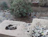يحتوى على حيوانات نافقة وقمامة.. شكوى سكان الأرناؤوطى من دكانين مغلقين