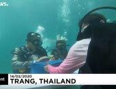 فيديو.. عروسان يحتفلان بعد قرانهما تحت الماء احتفالا بعيد الحب