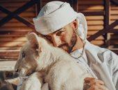 مالوما قلب الأسد.. يرتدى الجلباب بعد حفله الأخير فى دبي
