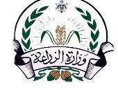 الزراعة الأردنية تدعو المنظمات الدولية للمشاركة فى القضاء على الجراد الصحراوى