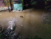 مصرع طبيب بيطري صعقًا بالكهرباء بسبب مياه الأمطار فى الشرقية
