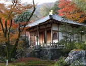 كورونا قطع أكل عيشهم.. حملة مبتكرة فى كيوتو اليابانية لجذب السياح.. صور