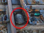 """حيلة ذكية من السكة الحديد اليابانية لإنقاذ """"السلاحف"""" العالقة بين القضبان"""
