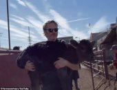 """نجم الأوسكار فى مهمة جديدة لإنقاذ الحيوانات.. خواكين فينيكس ينقذ """"بقرة وأبنها"""" من الذبح"""