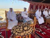 """رئيس الإمارات بصحبة محمد بن زايد فى جولة لغابة محمية """"غناظة"""".. صور"""
