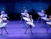 7 حفلات لباليه بحيرة البجع على المسرح الكبير بالأوبرا