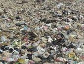 شكوى من انتشار القمامة والرتش بمنطقة النهضة خلف المحمودية