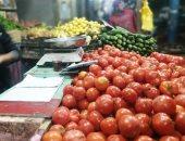 الزراعة: لجان لمتابعة الخضر الصيفية لزيادة المعروض ومواجهة التقلبات الجوية